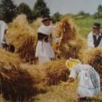 Tradicionalna Slavonska žetva 150x150 Najpotpuniji recept za slavonski čobanac