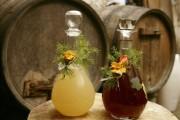 Slovensko Martinovo – praznik vina