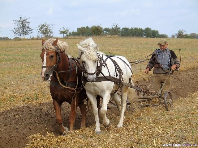 Stari običaji života na selu!