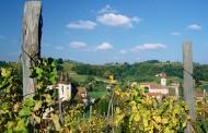 Povijest vinogradarstva u Zagorju i Slavoniji