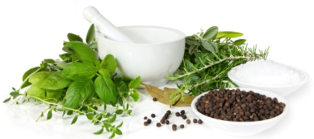 Ljekovite, začinske trave -pripravci od začinskog bilja-