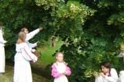 Lipa – sveto slavensko drvo