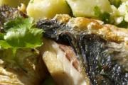Riblja zdijela narodni recept starih rimljana