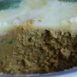 Tradicionalno jelo od guščje paštete 150x150 Tradicionalni hrvatski recepti za pripremu šarana