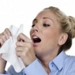 Prirodni ljekovi za gripu 150x150 Ljekovito bilje i upotreba kod naših starih