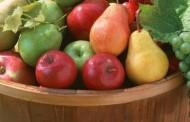 Tradicionalno kiseljenje voća i priprema čoke ili starog seljačkog soka