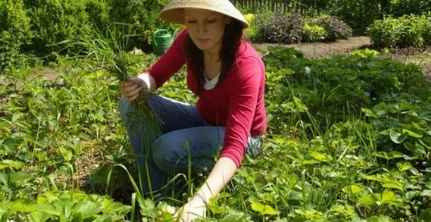 Proljeće, proljetni običaji i tradicija proljetne sadnje