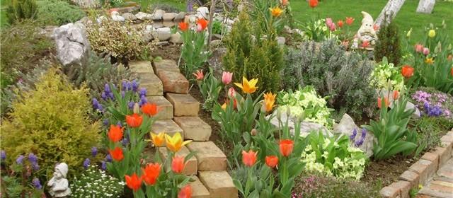 Tradicija uzgoja i sadnje cvijeća