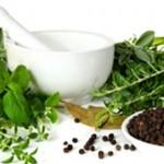 Ljekovito bilje i upotreba kod naših starih