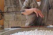 Svila, osnovne informacije i stadiji uzgoja