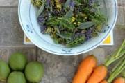 Najbolje prirodno ulje za sunčanje po tradicionalnom receptu