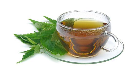 čaj od koprive za lječenje