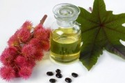 Ricinusovo ulje najbolji lijek za kosu i probavu
