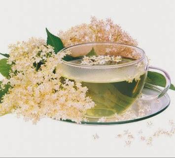 bazgin ljekoviti čaj