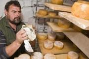 Tradicionalni ovčiji sir s Brača uskoro dobiva oznaku izvornosti