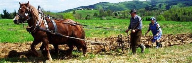 Proljetni običaji i tradicionalni proljetni poslovi