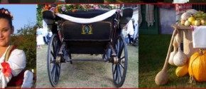 srpska-narodna-svadba tradicija i običaji