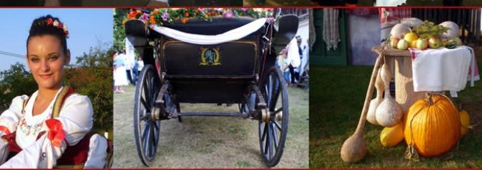 Srpski svadbeni običaji (prvi deo – pre venčanja)
