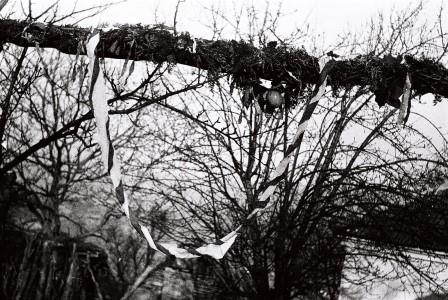 Foto zapis 1972.g.,  planinski zaeok Predanča sela G. Dejan(Vlasotince) republika Srbija:- Kićeni dvori devojke i kapija na kojoj uz svadbarsko-svatovskim pesmama ulaze svatovi i  se odvodi devojka  momkovoj kući
