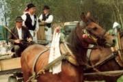 Tradicionalni svatovi stižu po djevojku
