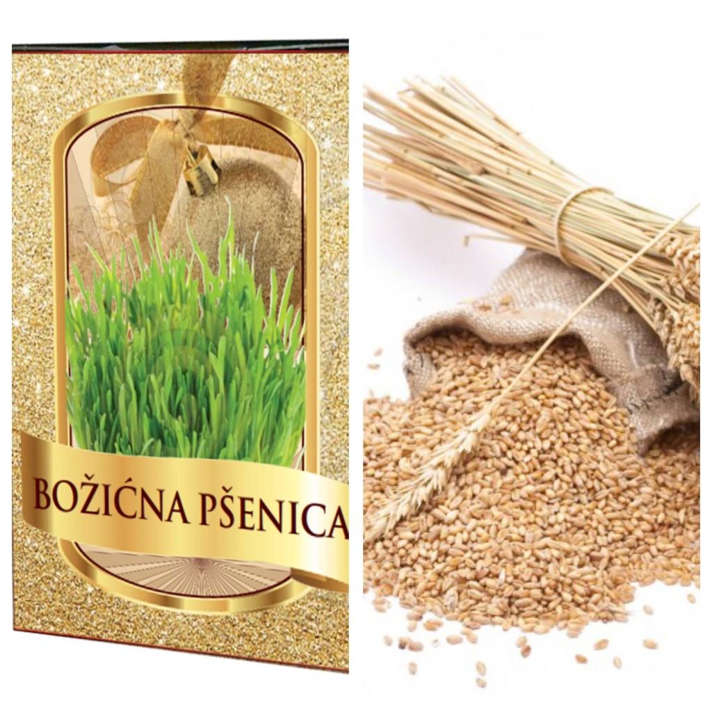 Najbolja božićna pšenica