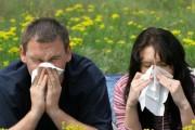 Izlječite alergije odgovarajućom prehranom