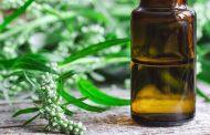 Jednostavno pripravite ljekovitu tinkturu ili biljni ocat